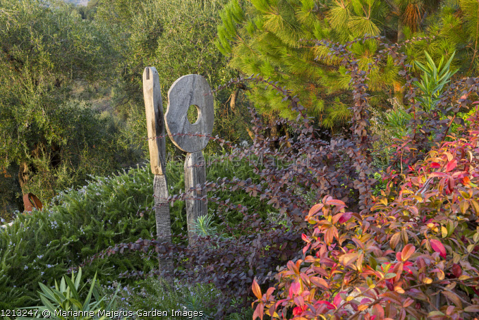 Oak sculpture, 'Wherever you are is called Here' by Katherine Wise, in border, Berberis thunbergii, Trachelospermum jasminoides, Pinus halepensis