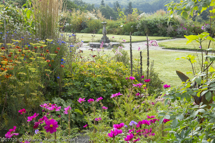 Annual border, view to sundial, cosmos, fennel