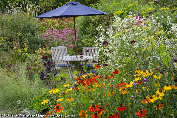 Wooden table and chairs under umbrella in border, Helenium 'Waltraut', Erigeron annuus, Persicaria orientalis