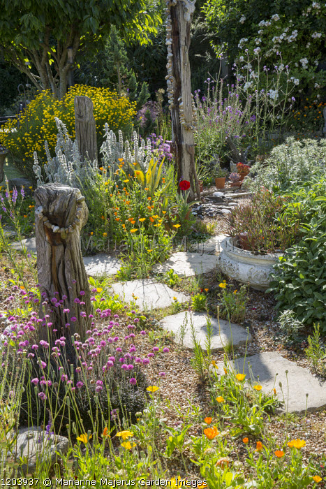 Seaside Themed Garden Driftwood With Strings Of Pebbles Armeria Maritima Stachys Byzantina
