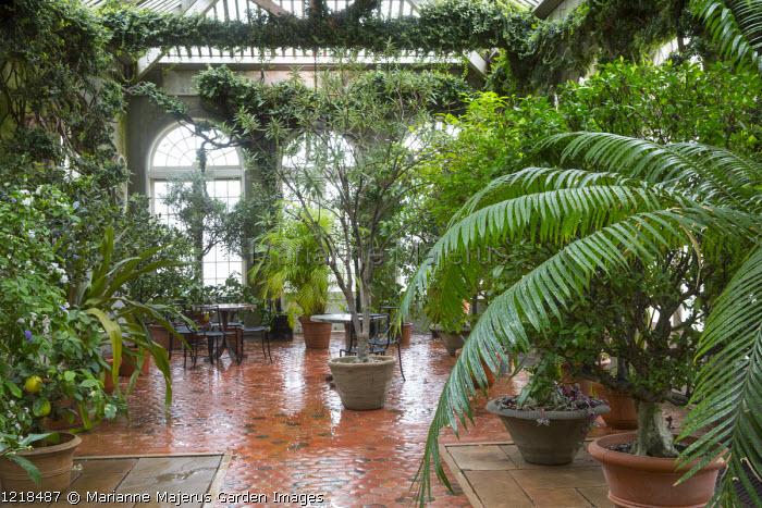 Interior of orangerie
