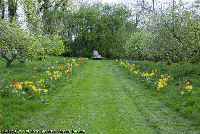 Mown path through lawn lined with tulips including Tulipa 'Candela', 'Euromast', 'Orange Emperor', 'Cherida', 'Makassar', 'Garant', 'Golden Apeldoorn' and 'City of Vancouver', view to metal bench by Ben Coode-Adams around large rock