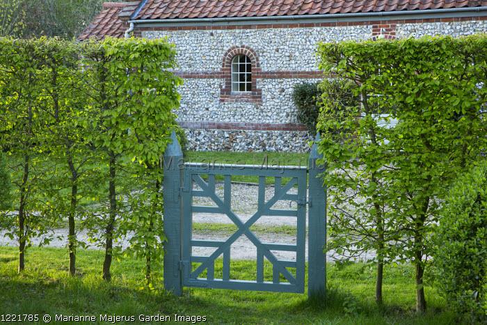 Wooden gate in hornbeam hedge