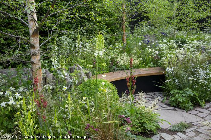 Wooden bench, Verbascum 'Petra', Camassia leichtlinii subsp. leichtlinii, Deschampsia flexuosa, box ball, Digitalis purpurea f. albiflora, Eremurus robusta