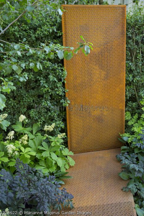 Cor-Ten steel panel, Rodgersia podophylla