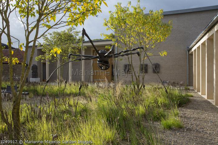 Spider sculpture by Louise Bourgeois, Sesleria autumnalis and Molinia caerulea subsp. caerulea 'Moorhexe', multi-stemmed Broussonetia papyrifera