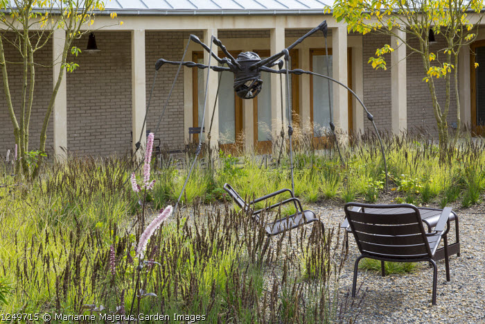 Spider sculpture by Louise Bourgeois, Sesleria autumnalis and Molinia caerulea subsp. caerulea 'Moorhexe', Actaea simplex 'Prichards Giant', contemporary chairs