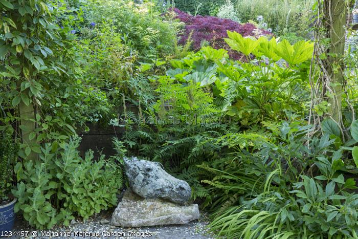 Bronze Horse Head on stone base by Andrew Lacey on patio, Osmunda regalis, Darmera peltata syn. Peltiphyllum peltatum, Sorbaria sorbifolia 'Sem', acer, Fatsia japonica