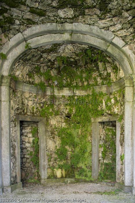 Ferns on tufa wall in arched niche