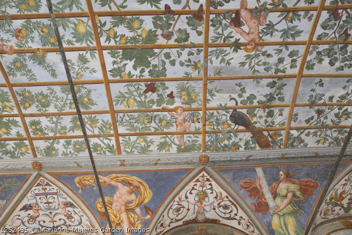 Ceiling with portico with frescoes by Giulio, Antonio and Vincenzo Campi of Cremona