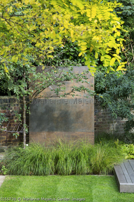 Prunus 'Accolade', Anemanthele lessoniana, Robinia pseudoacacia 'Frisia', copper-clad wall