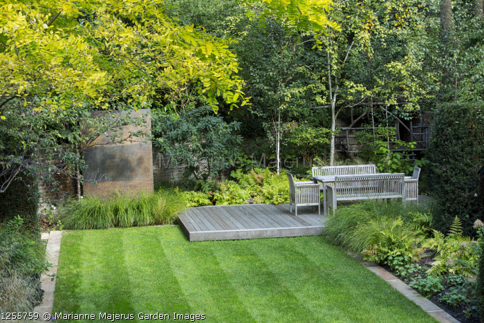 Overview of autumnal town garden, formal rectangular lawn edged with stone, Robinia pseudoacacia 'Frisia', Anemanthele lessoniana