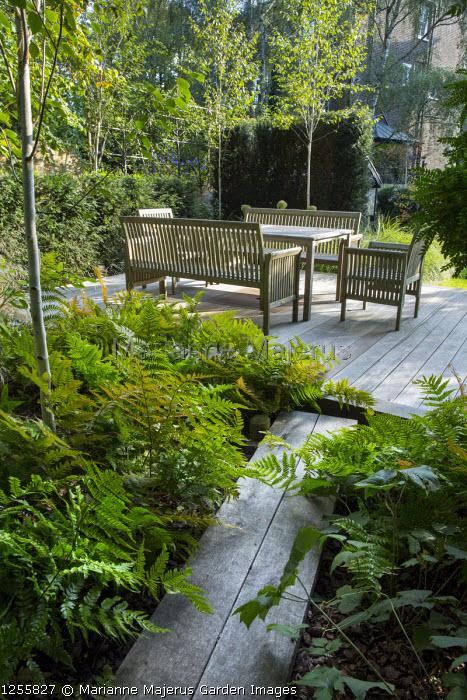 Oak boardwalk through shady garden, Dryopteris erythrosora, table and chairs on decking, yew hedge