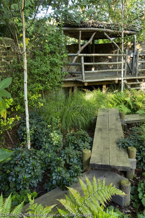 Raised oak boardwalk through shady garden, treehouse, Dryopteris erythrosora, Betula utilis var. jacquemontii, Anemanthele lessoniana, Euphorbia amygdaloides var. robbiae