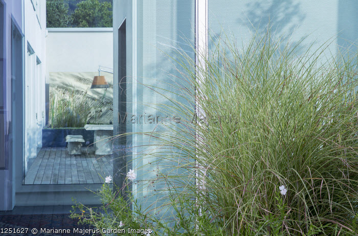 Contemporary table and chairs on Mediterranean terrace, suspended lamp, Oenothera lindheimeri syn. gaura, Miscanthus sinensis 'Morning Light'