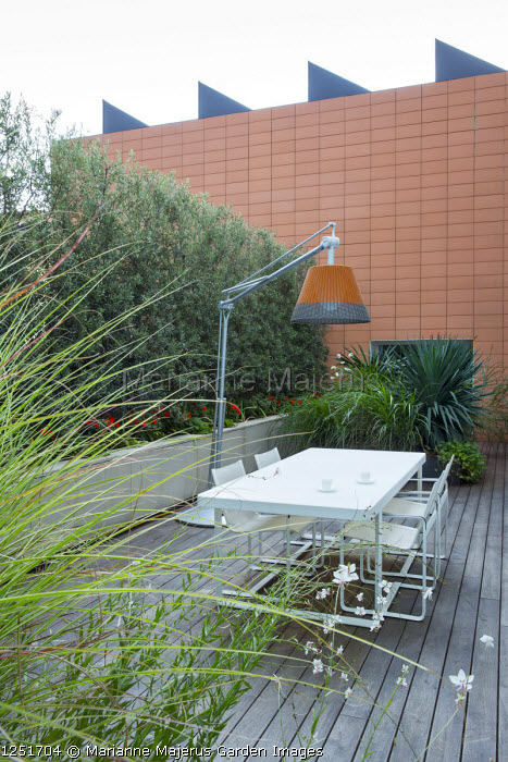Contemporary lamp suspended above table and chairs on decking, Olea europaea 'Cipressino' screen, Yucca grandiflora