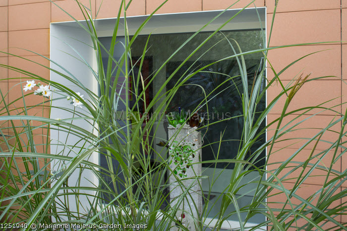"""Miscanthus sinensis, sculpture, """"Wall"""" (1980), by Roubickova Miluse"""