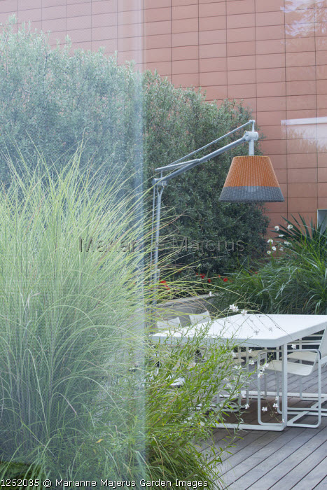 Contemporary lamp suspended above table and chairs on decking, view from inside through glass window to contemporary courtyard outside, Olea europaea 'Cipressino' screen, Miscanthus sinensis 'Morning Light'
