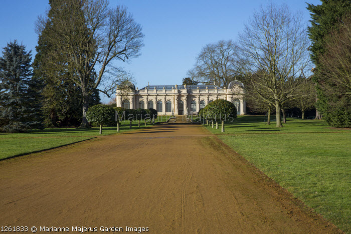 Wide path leading to Orangery flanked by standard trained trees
