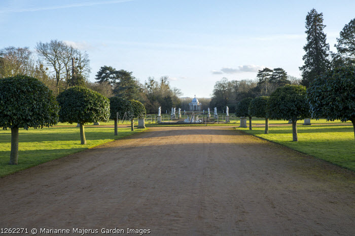 Standard tree-lined avenue, wide path, view to the Pavilion