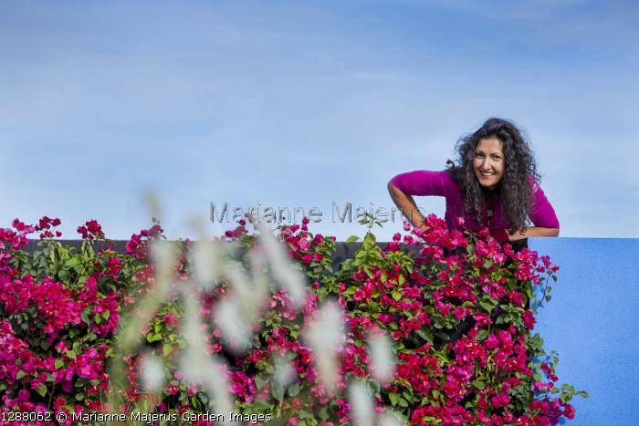 Esra Parr on top of Bougainvillea 'Barbara Karst' wall