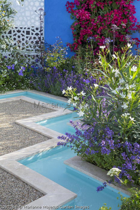 Formal rill around gravel terrace, Nerium oleander 'Album', Nepeta x faassenii 'Kitkat', Lavandula angustifolia 'Hidcote', Bougainvillea 'Barbara Karst' living green wall