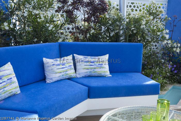 Blue cushions on built-in bench, Nerium oleander 'Album'