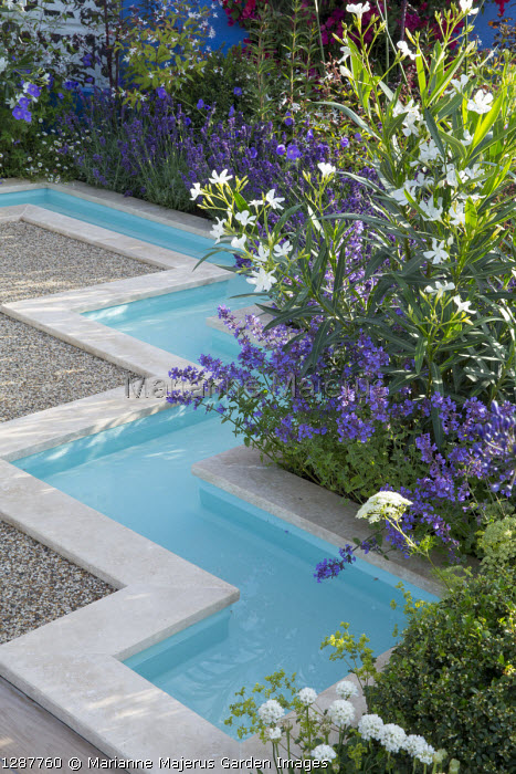 Formal rill around gravel terrace, Nepeta x faassenii 'Kitkat', Nerium oleander 'Album'
