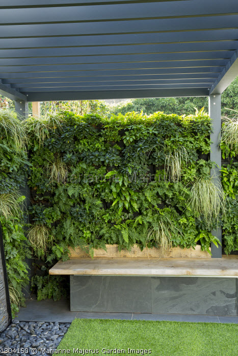 Living green wall with built-in bench, Asplenium scolopendrium, Polypodium vulgare, Carex oshimensis 'Evergold', Pachysandra terminalis, Euphorbia amygdaloides