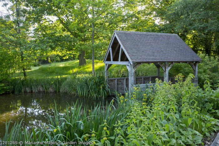 Timber boathouse, Iris pseudacorus, Phlomis russeliana