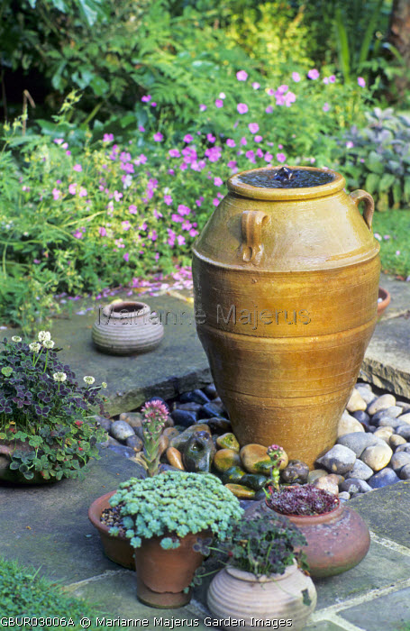 Bubbling terracotta urn fountain, pebbles, sempervivums in containers
