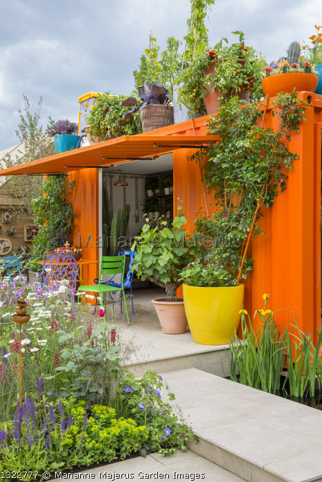 Orange painted shipping container pavilion, colourful chairs and pots on stone patio, grape vine, roses, tomatoes and strawberries in containers, Verbascum 'Firedance', Orlaya grandiflora, euphorbia
