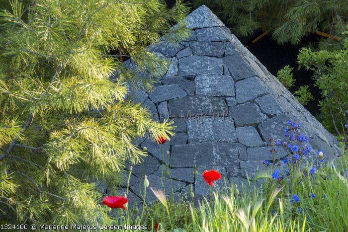 Pinus halepensis, black basalt stone pyramid, Papaver rhoeas, Anchusa azurea, Hordeum vulgare
