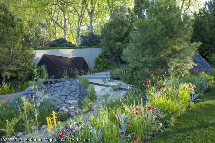 Pinus halepensis, black basalt stone raised pool, Papaver rhoeas, Crambe hispanica