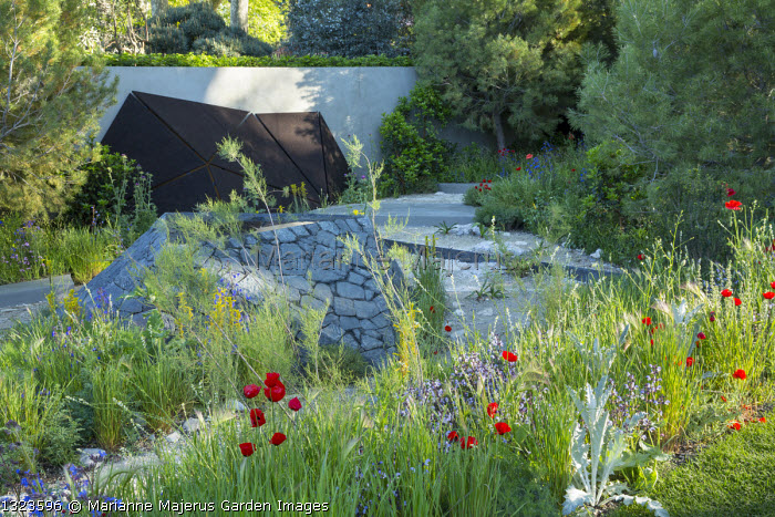 Black basalt stone raised pool, Papaver rhoeas