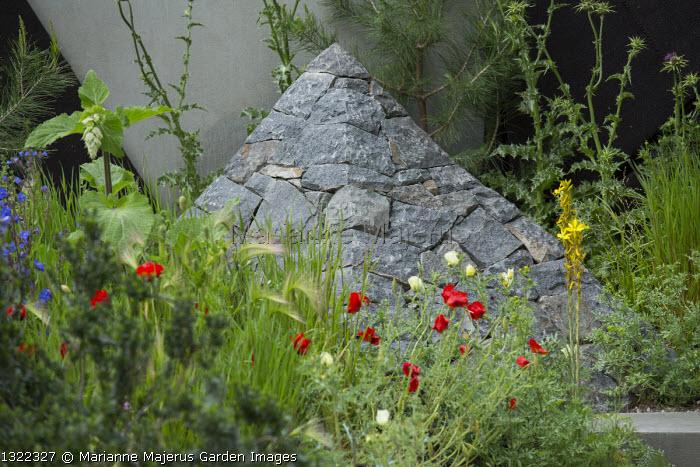 Black basalt stone pyramid, Papaver rhoeas, Onopordum jordanicolum, Hordeum vulgare