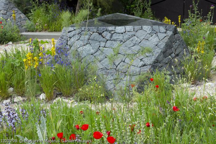 Black basalt stone raised pool, Papaver rhoeas, Asphodeline lutea, salvia