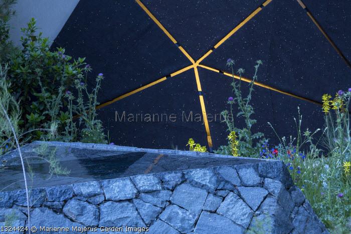 Black basalt stone raised pool, Onopordum jordanicolum
