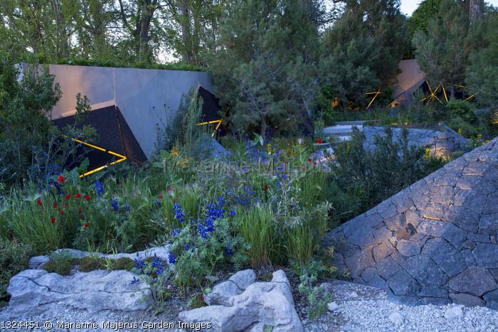 Mediterranean garden at night, lit sculptures, Papaver rhoeas, Anchusa azurea, Hordeum vulgare