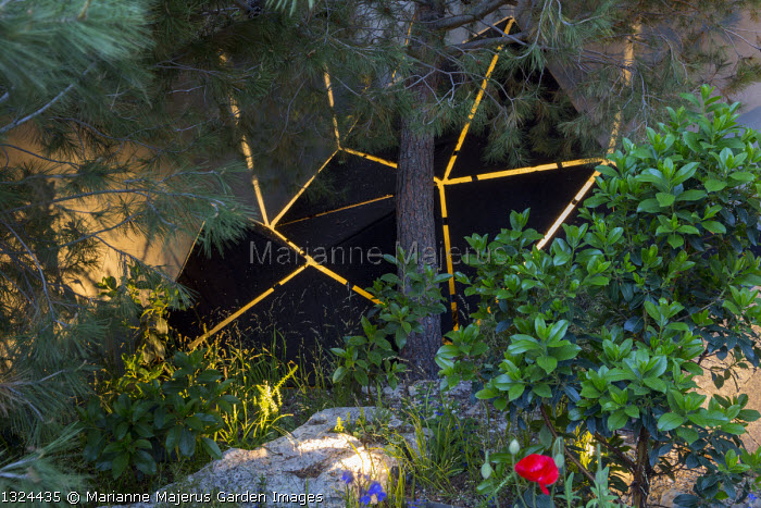 Pinus halepensis by lit sculpture against wall, Arbutus x andrachnoides