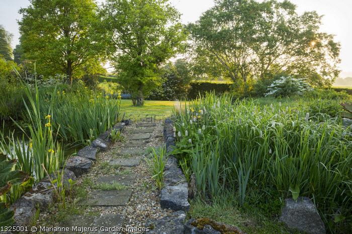 Rocks edging stepping stone path through damp border, Iris pseudacorus, Persicaria bistorta 'Superba'