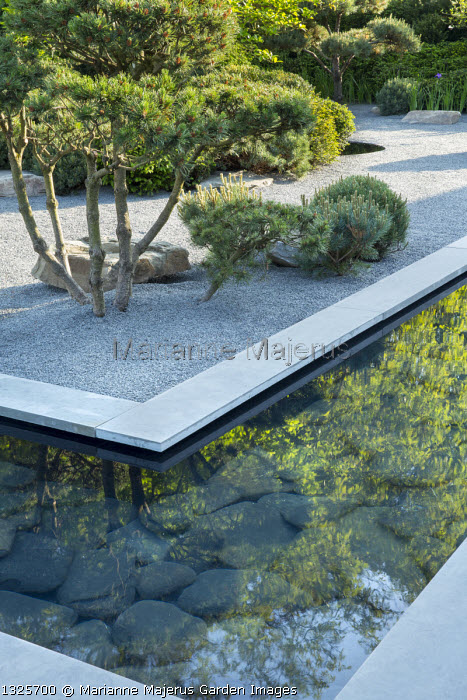 Slate paddlestones in formal pool edged with grey Yorkstone paving, basalt granite gravel chippings, Pinus sylvestris bonsai