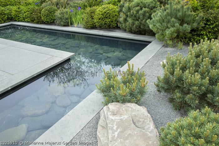 Formal pool with slate paddlestones and grey Yorkstone paved edging, basalt granite gravel chippings, cloud-pruned Pinus sylvestris 'Watereri' and Pinus sylvestris, rock