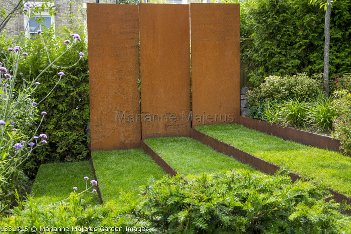 Grass steps with cor-ten steel risers, cor-ten steel wall, yew hedge, Verbena bonariensis, euphorbia