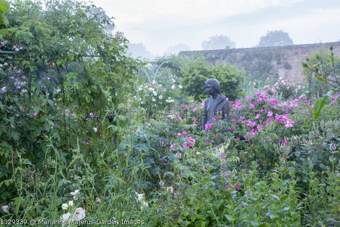 Rose garden, statue of Rosamund Clifford, Rosa gallica 'Versicolor'