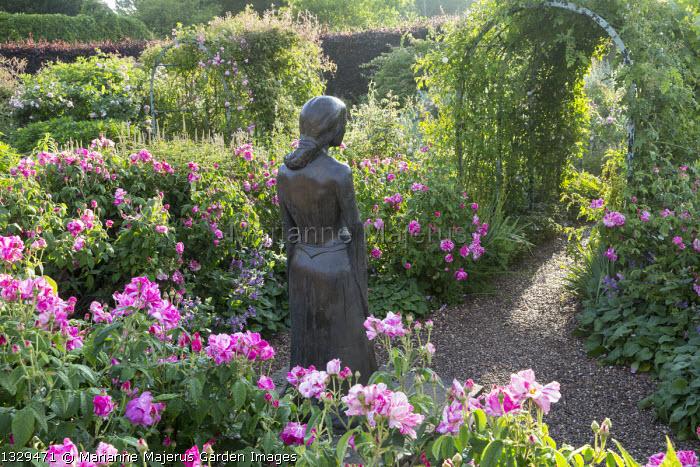 Rosa gallica 'Versicolor', statue of Rosamund Clifford, tunnel