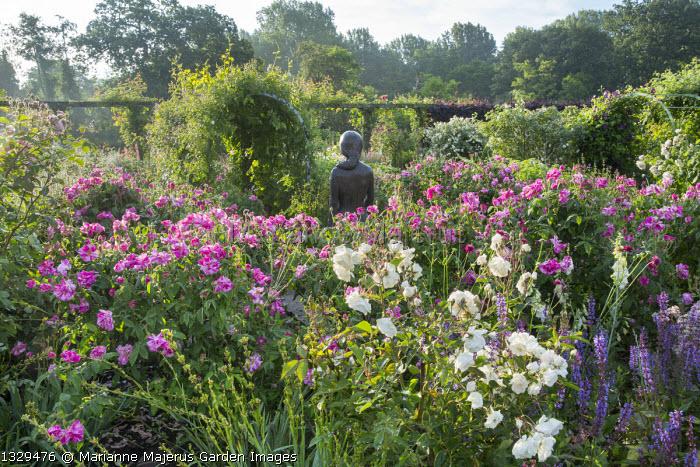 Rose garden, Rosa gallica 'Versicolor', statue of Rosamund Clifford, Salvia × superba