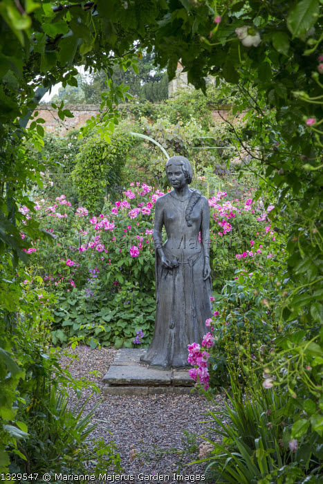 Statue of Rosamund Clifford framed by arch, Rosa gallica 'Versicolor'