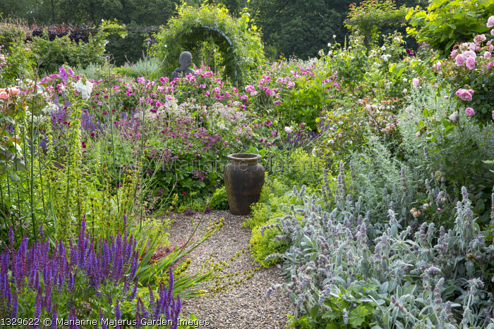 Rose garden, urn on gravel path, salvia, Stachys byzantina, Astrantia major 'Claret' and 'Roma', Alchemilla mollis, Sisyrinchium striatum, Rosa gallica 'Versicolor'