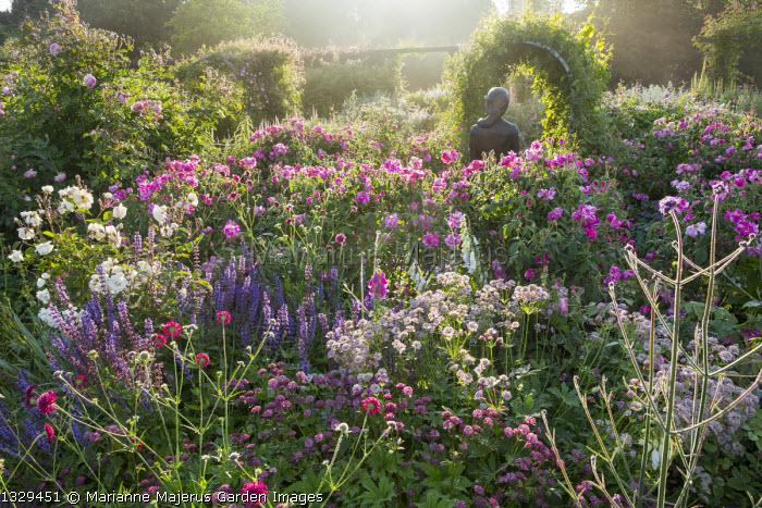 Rose garden, Rosa gallica 'Versicolor', Astrantia major 'Claret' and 'Roma', Salvia × superba, Knautia macedonica, statue of Rosamund Clifford